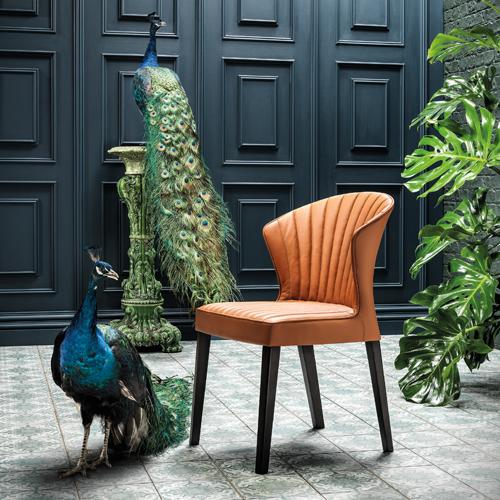 Cardita-Chair