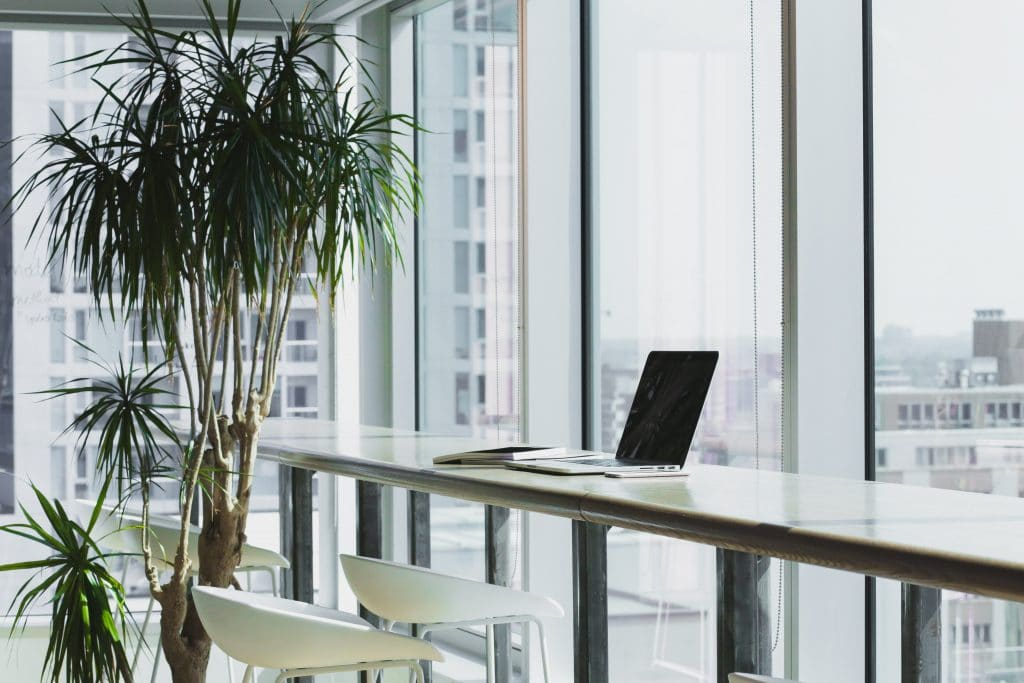 Office with a tall plant